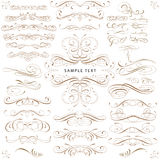 CURLS design elements set. Fine line set of design elements isolated on light background Royalty Free Stock Image