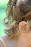 Curly Blond Hair Stock Image