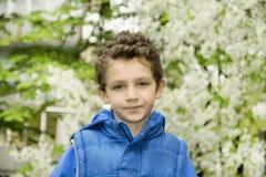 Curly boy. Royalty Free Stock Photos