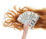 Curly brown hair and money in hand over white. Background, dollars bills, hair salon Stock Photos