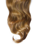 Curly brown hair over white Royalty Free Stock Images