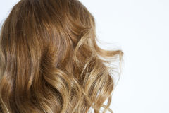Curly brown hair. Over white background Royalty Free Stock Images