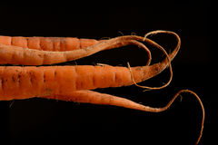 Curly carrots on black Stock Photo