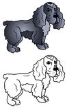 Curly dog Cocker Spaniel caricature Stock Images