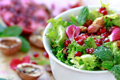 Curly endive salad with pomegranate, nuts, rose petals... Stock Images