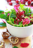 Curly endive salad with pomegranate, nuts, rose petals... Royalty Free Stock Photography