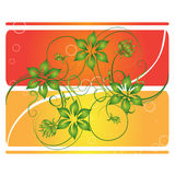 Curly flowers over card. Curly flower banner over lines Royalty Free Stock Image