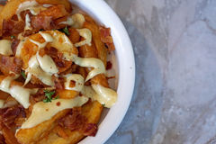 Curly Fries with bacon and truffle sauce Royalty Free Stock Photo