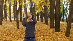 Curly funny and happy man dancing in the autumn park, comical and cheerfully human emotion. Leaf fall in a town in sunny. Young caucasian male guy, positive stock video footage