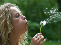 Curly girl blow dandelion Royalty Free Stock Photos