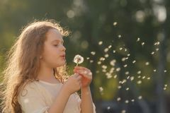 Girl dancing in flying dandelions outdoors. Royalty Free Stock Photo