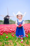 Curly girl in Dutch costume in tulips field with windmill. Adorable curly toddler girl wearing Dutch traditional national costume dress and hat playing in a Royalty Free Stock Photos
