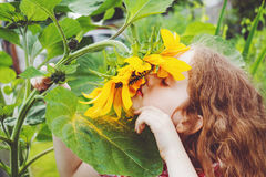 Curly girl smell sunflower enjoying nature in summer sunny day. Royalty Free Stock Image
