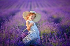Curly girl standing on a lavender field in white dress and hat with cute face and nice hair with lavender bouquet and stock photos