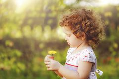 Curly girl with yellow dandelions. Stock Image