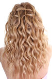 Curly hair. Curly female hair over white background Royalty Free Stock Photography