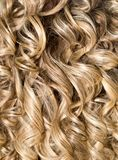 Curly Hair. Hairdressing. Wave .Natural Hair Royalty Free Stock Image