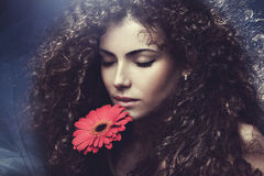 Beauty woman Stock Images