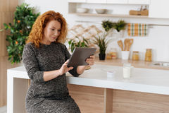 Curly-haired expectant woman working on digital tablet. Browsing the net. Full term pregnant woman wearing dress sitting in the kitchen and using a tablet while royalty free stock images