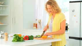 Curly haired woman preparing the lunch Stock Photography