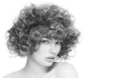 Curly hairstyle Stock Photography