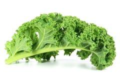 Curly Kale Stock Photos