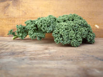 Curly kale leave Royalty Free Stock Image