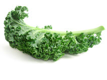 Curly kale leaves Royalty Free Stock Images