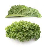 Curly kale leaves Royalty Free Stock Photo