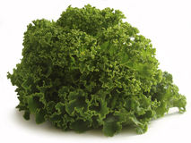 Curly kale leaves Royalty Free Stock Photos