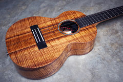 Curly Koa ukulele Royalty Free Stock Image