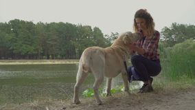 Young redhead girl is stroking her dog near the river stock video footage