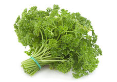Curly parsley bunch Royalty Free Stock Photo