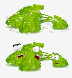 Curly parsley character Stock Images
