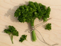 Curly parsley Stock Photos