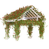 Curly red roses on the pergola Royalty Free Stock Photo