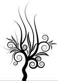 Curly Tree Vector Stock Photography