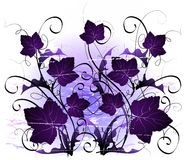 Curly vines and leaves. On purple and white gradient background Royalty Free Stock Photos