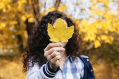 Curly woman holding maple leaf royalty free stock photos