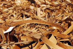 Curly wood shavings Royalty Free Stock Image