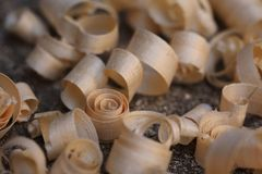 Curly wood shavings Stock Photography
