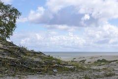 curonian οβελός Στοκ φωτογραφία με δικαίωμα ελεύθερης χρήσης