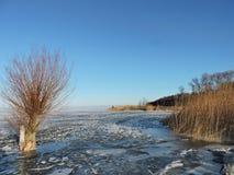 Curonian lagoon shore , winter. Lithuanian landscape Stock Photo