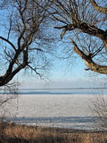 Curonian lagoon shore , winter. Lithuanian landscape Royalty Free Stock Image