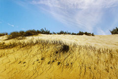 The Curonian Spit. Stock Image