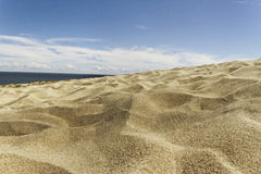The Curonian Spit. Royalty Free Stock Images