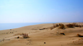 Curonian Spit Royalty Free Stock Image
