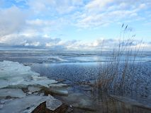 Curonian spit and ice pieces in spring, Lithuania Royalty Free Stock Photo