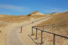 Curonian Spit. The Curonian Spit in Lithuania royalty free stock photo