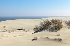 Curonian spit Stock Photos